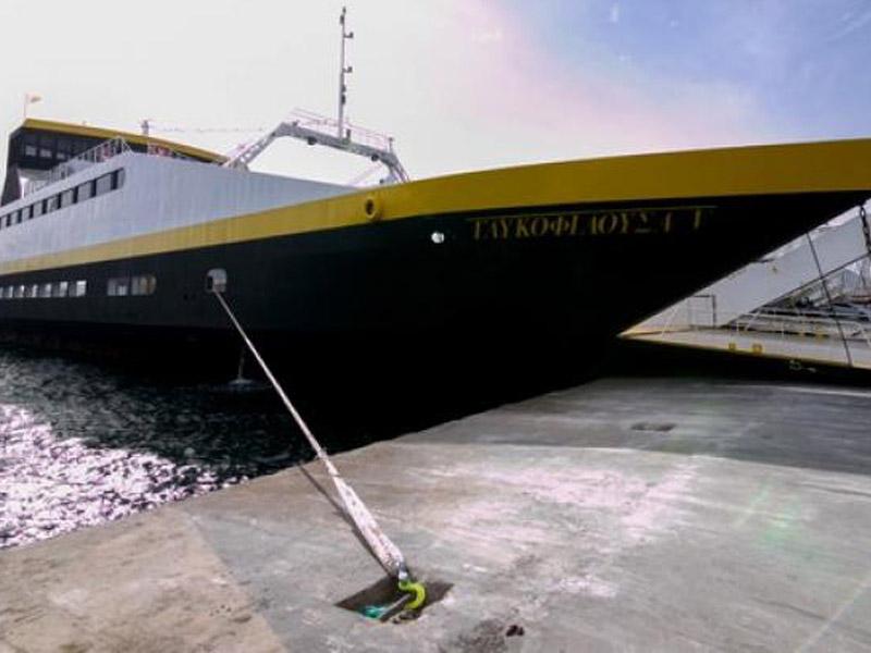 Γλυκοφιλούσα V: Πλώρη γα τις βόρειες θάλασσες